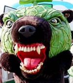メロン熊 怖い
